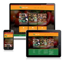 Webseite für bio4me in Sinsheim